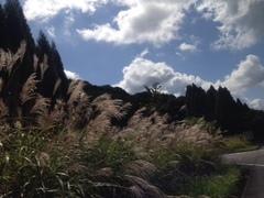 【鹿児島】10月10日は・・○○の日です