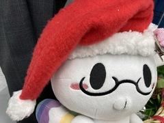【鹿児島 通信制高校】★祝★大学合格ニュース!~午後の部~