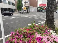 【鹿児島】新しい!気持ちで 4/9(金)始業式&4/14(水)入学式