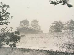 【熊本】雪です...(+_+)