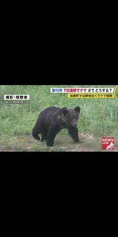 【室蘭】吉田先生宅に熊出没。