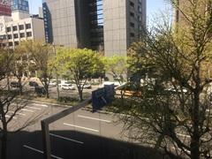 【名古屋】春らしいお天気