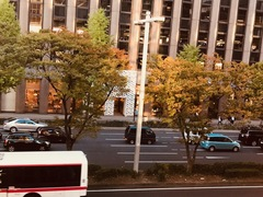 【名古屋】秋らしい色になってきました