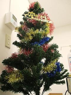 【新潟】もうすぐクリスマスですね('▽'♪)
