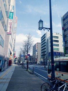 【新潟】桜咲く? (*´ω`*)