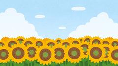 【岡山】夏の色
