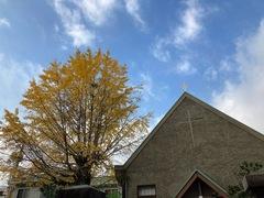 【岡山】秋の深まり