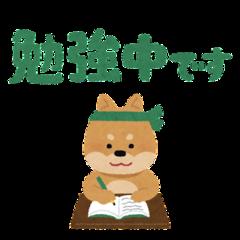 【大宮】2022年度新設大学学部学科