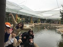 【大阪】神戸どうぶつ王国と南京町に行ってきました♪