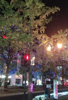 【大阪】イルミネーションの季節がやってきました!