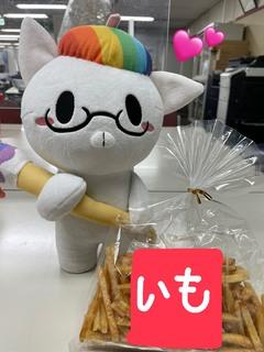 【大阪】甘いもの大好きだにゃん!