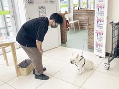 【なんば】ペットの授業☆