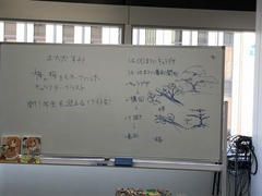 【札幌駅前】❀ジョブフェスタが開催されました❀④