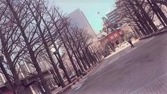 【札幌大通】すっかり春らしく...?