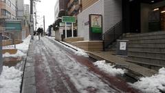 やっぱり雪が積もっちゃいました!