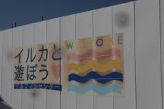 【高松】ドルフィントレーナコースの取材☆
