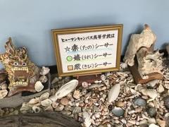 【高崎】本校スクーリング@沖縄・名護 続5