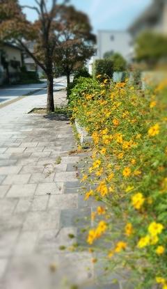 【宇都宮】10月スタート!
