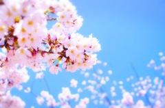【宇都宮】休校期間のお知らせ