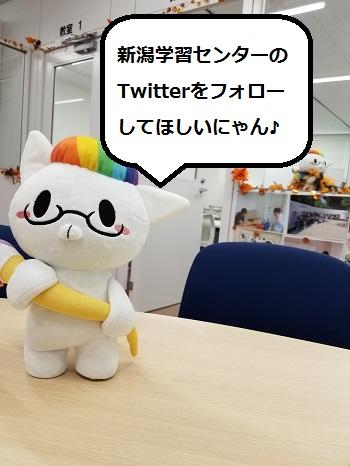 【新潟】Twitterで相談しちゃおう!